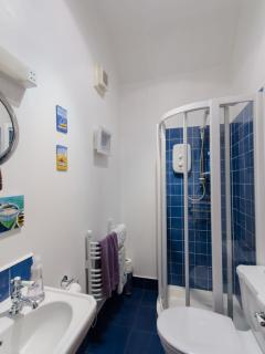 Perth Holiday Home - downstairs shower room