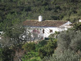 Casa Violeta, Cova da Muda, São Brás de Alportel