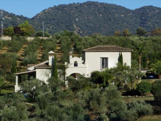 Elegant villa for your family holidays near Ronda