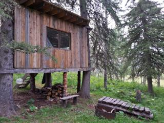 Treehouse in the western woods, Millarville