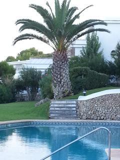 piscina y jardin