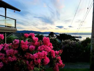 Fairhaven Bayview Suite - New Summer Availability!, Bellingham