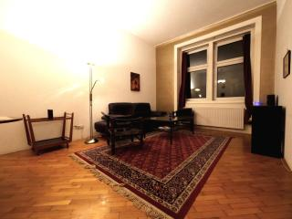 Cozy 1Br Flat in City Center 70m2 +Wifi, Wien