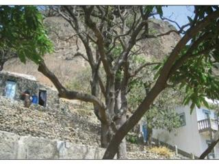 Kaza di Zaza - Kaza baixo, Vila do Maio