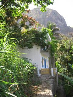 Kaza di Zaza, with sugar cane and fruit trees