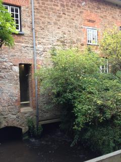 Otterton Mill a great riverside walk takes you here. Still a working mill
