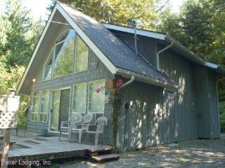39GS Pet Friendly Cabin near Mt. Baker has WiFi, Glacier