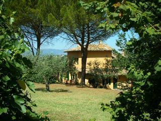 La Licina-Ginestra-  La tua casa in campagna, Spoleto