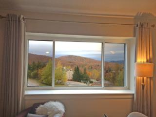 Beautifully Updated Condo Close to Snowshed Lift, Killington