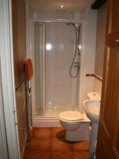 The shower room, with sink and toilet - step up is about 6' into shower.