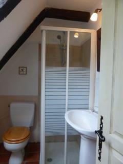 Shower room and toilet