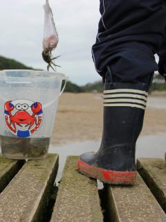 Kids & Adults will love crabbing at low tide! Just 5 mins walk down the hill to the Gannel.