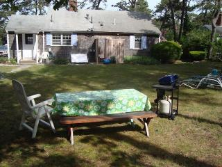 Spacious Back Yard with dining and gas grill - 139 Clearwater Drive Harwich Cape Cod New England Vacation Rentals