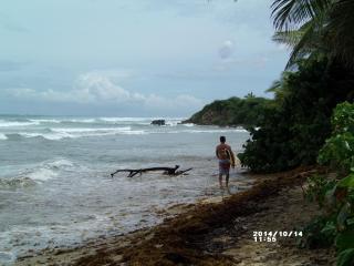 Bodhi Playa Purple AS SEEN ON HGTV CARIBBEAN LIFE