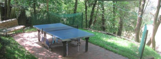 Ping pong area in the forest