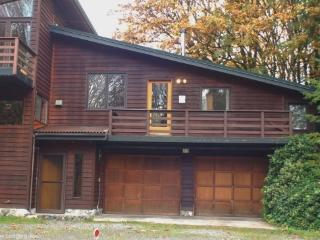 05MBH Apartment on 16 Riverside Acres near Mt. Baker, Glacier