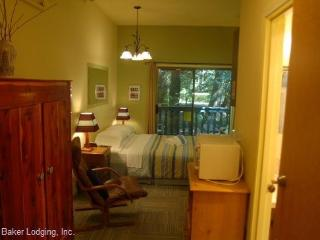 77SLL Budget Priced Condo near Mt. Baker, Glacier