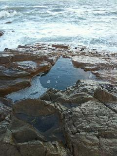 The rock pool.