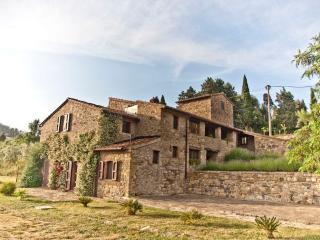 Charming house Ulivo in Montelucci near Chianti, Pergine Valdarno