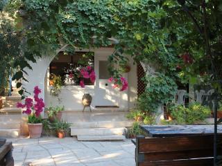 Asprogi Lemon Cottage - Bed & Breakfast, Paphos