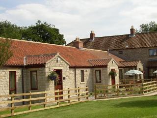 Pasture View Cottage - Pickering