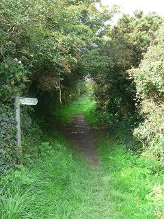 Footpath to Whitsand Bay