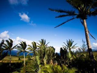 Spectacular Ocean/Mountain Views, Honeymoon, Maui, Haiku