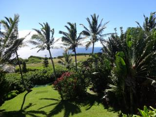Spectacular Ocean/Mountain Views, Honeymoon, Maui