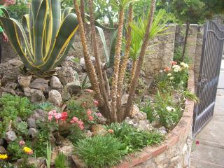 Ingresso taverna: giardino roccioso con le più belle piante grasse