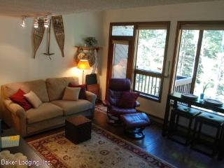 61SW Snowater Condo near Skiing and Hiking at Mt. Baker, Glacier