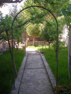 il giardino: viale laterale