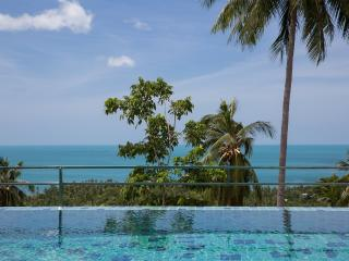 Infinity pool with breath taking views