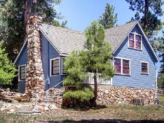 Sweet Blue Spruce