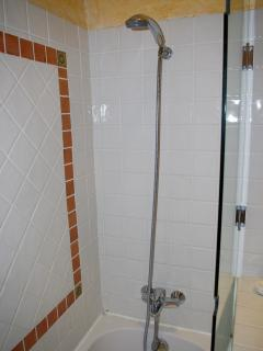 The bath with shower