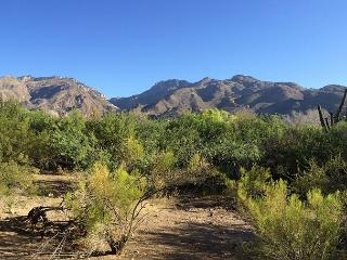 Relax and enjoy spectacular views of the Catalina Mountains!