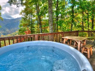 Let it Snow! Tube! Ski! 2/2 G/F G/G F/P Log Cabin Private!, Maggie Valley
