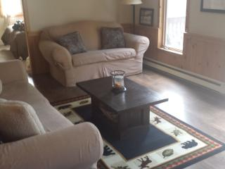 Newly Renovated Living Area