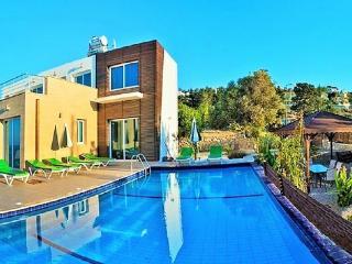 Villa of EDEN, Ayios Amvrosios