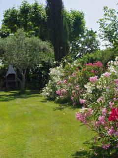 An another picture of the private garden