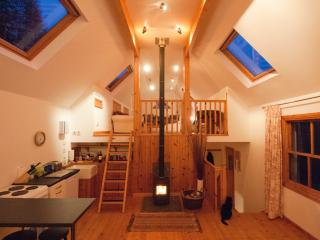 The downstairs living area with a blazing log fire.