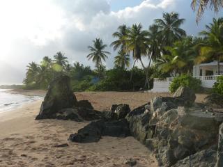Los Cocos Vieques, Beachfront Casa, prime location, Île de Vieques