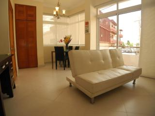 Apartment in best location of Old Town, Santo Domingo