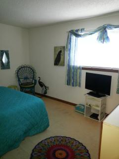Flat screen TV and DVD player in bedroom; walk in closet