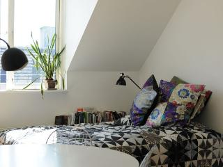 Wonderful Copenhagen apartment  near Botanical Garden, Kopenhagen
