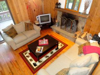 Walk to Okemo Ski Lifts! Private 5 bedroom home.