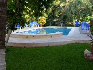 An oasis in the heart of San Miguel., Cozumel