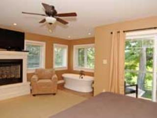 Master Suite with Soaker Tub/Fireplace