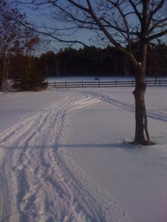 Ski Trails from the front door
