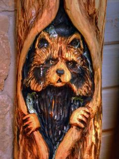 Raccoon Beside Fireplace