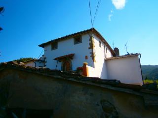 """VILLA """"IL LECCIO"""" - casa padronale storica, Vinci"""